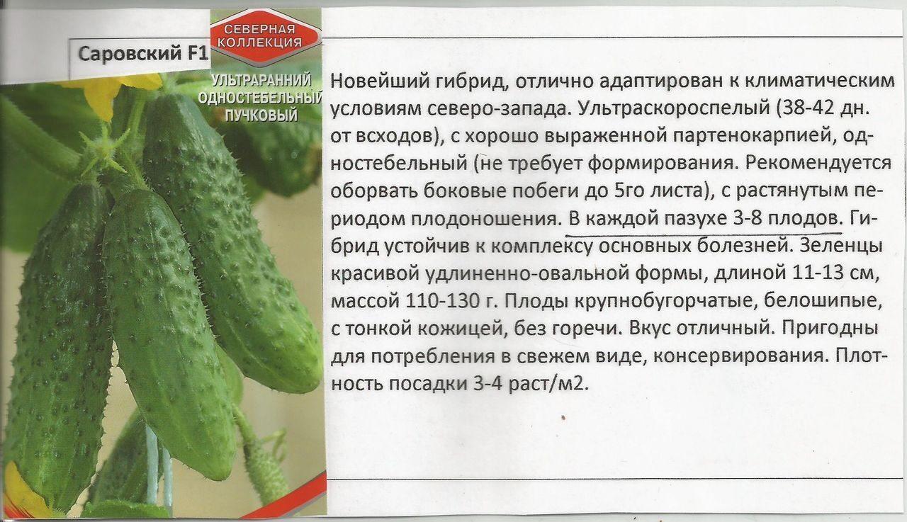 Продаётся рассада огурцов: короткоплодные, корнишоны, засоло.